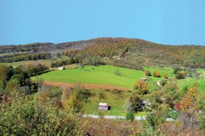 206+/- Acres - Offered in 2 Tracts