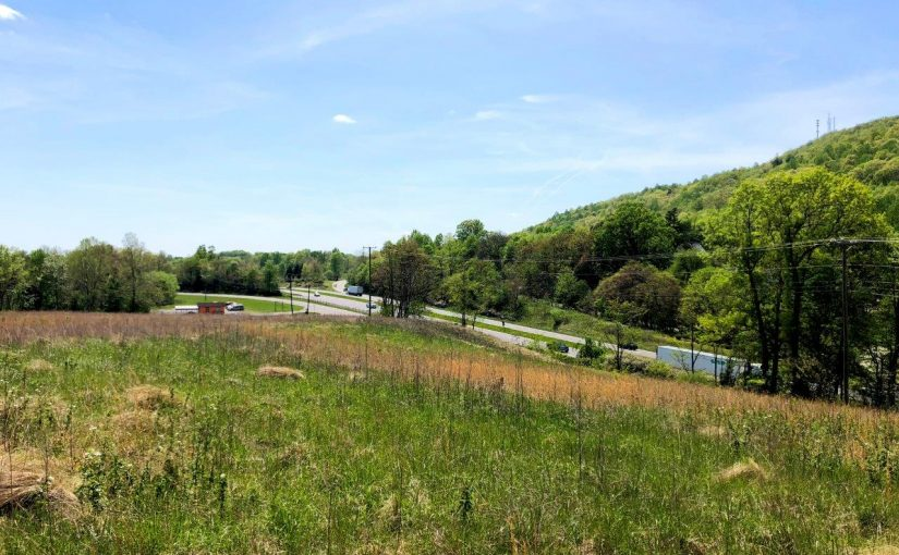 For Sale: 84± Acres with Great Visibility from Rt. 220