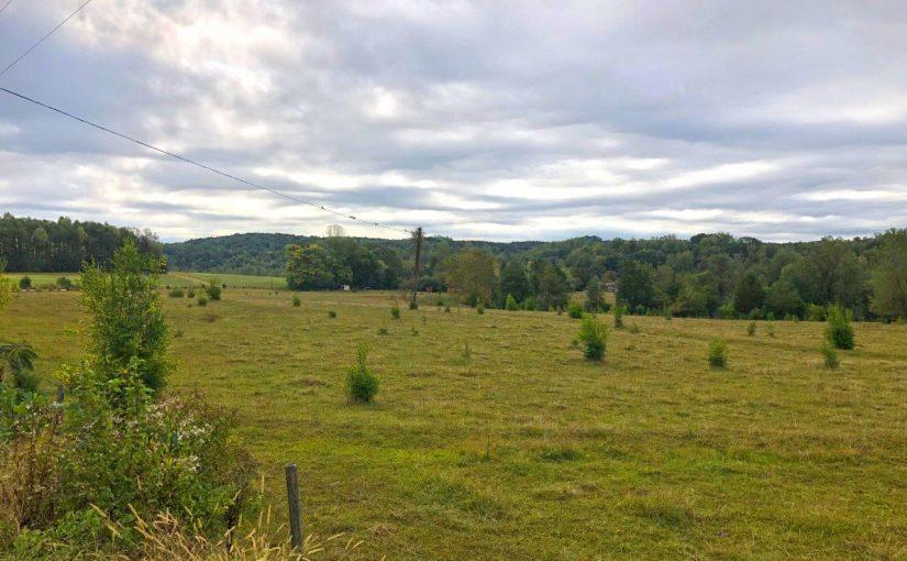 Historic Henry County Virginia Farm For Sale