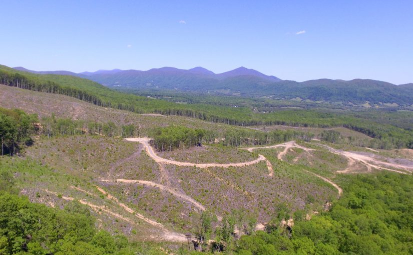 Sealed Bid Auction: Prime Opportunity – 162.73± Acres Joins National Forest