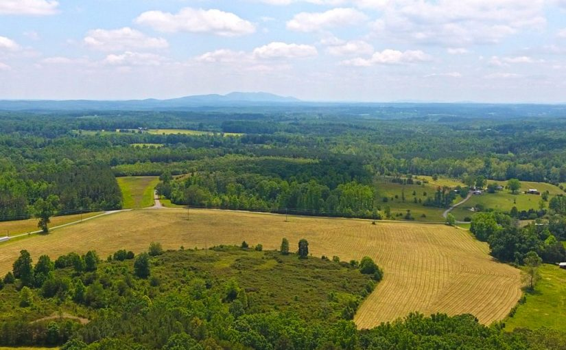 Real Estate Auction: Crouch Farm – 72± Acres