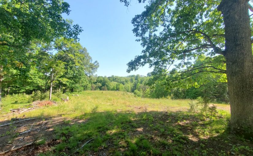 Real Estate Auction: 180.9 Acres Offered in 5 Tracts