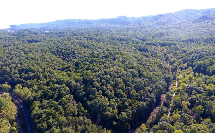 For Sale: 44.18 Acres -Privacy, Mountain Views, Stream Frontage, Adjoins Jefferson National Forest